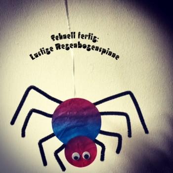 Bunte Hänge-Spinnen
