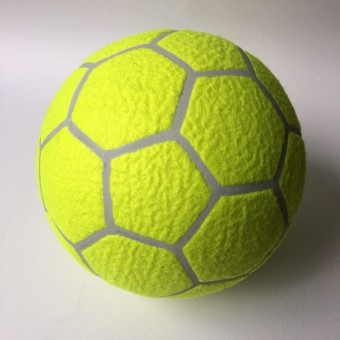Hallen-Trainingsball / Indoorball